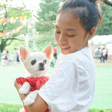 【取材】もうすぐ20歳のスーパーご長寿犬、チワワの「コナン」〜愛する弟の死を乗り越えて〜